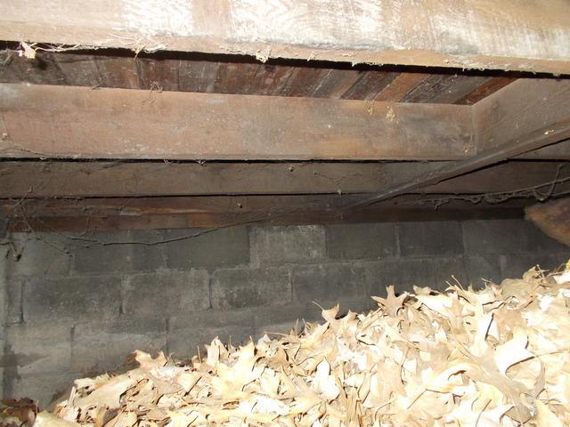 Crawl Space Insulation in East Alton, IL
