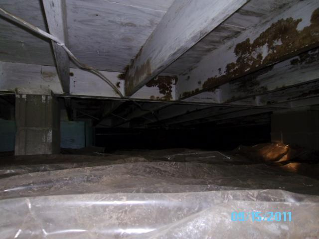Leaky Crawl Space in Mt. Vernon, IL