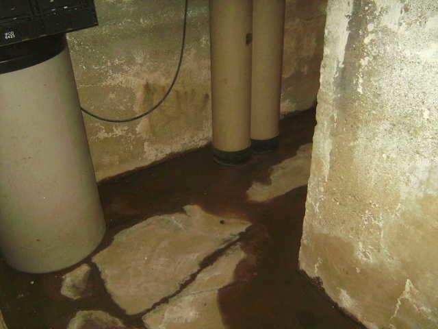 Leaky basement or condensation problem in Champaign, IL