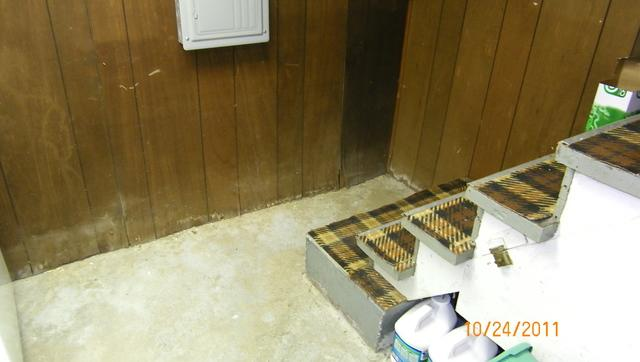 Mold Growth Deterred in Edwardsville, IL Basement
