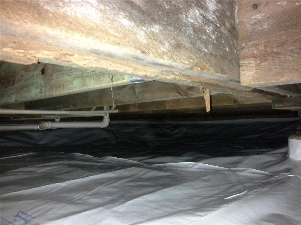 Low Clearance Crawlspace Encapsulation in Marshall, NC - After Photo