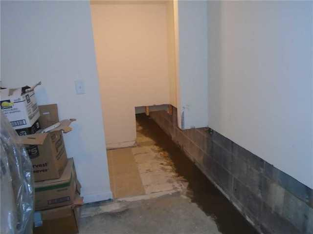 Basement Waterproofing in Clyde, NC