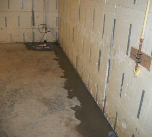 Storage Items at Risk in Leaky Basement in Blythewood, SC