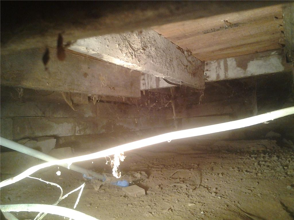 Dirt Crawl Space Encapsulated in Alma, WI - Before Photo