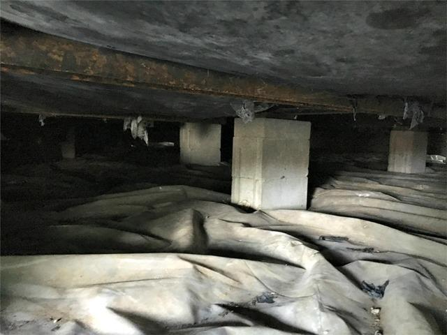 Wet Crawl Space in Dodge Center, MN