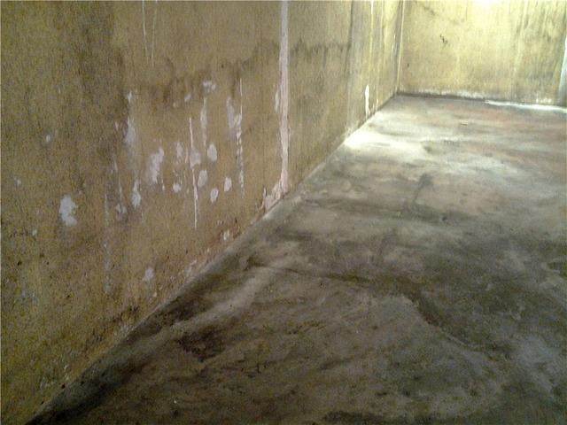 Water Damaged Basement in Hayward, MN