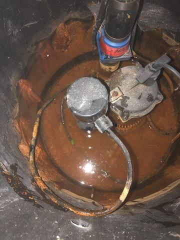 Iron Ochre Clogged Sump Pump Repaired in Houston, MN
