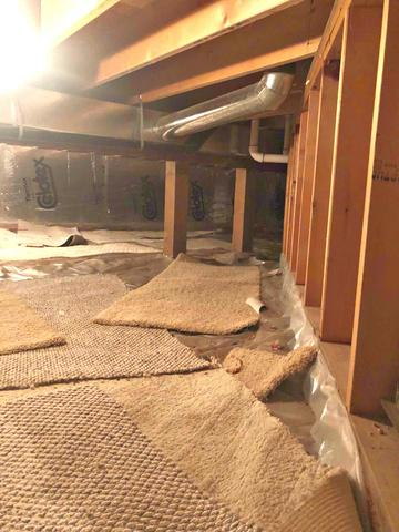 Crawl Space Encapsulated in Saint Paul, MN