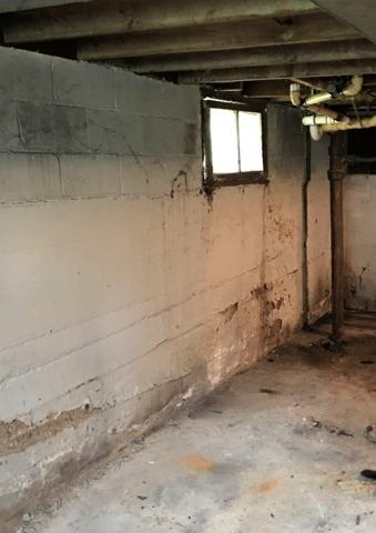 Basement Waterproofing and Window Repairs in Dunnell, MN
