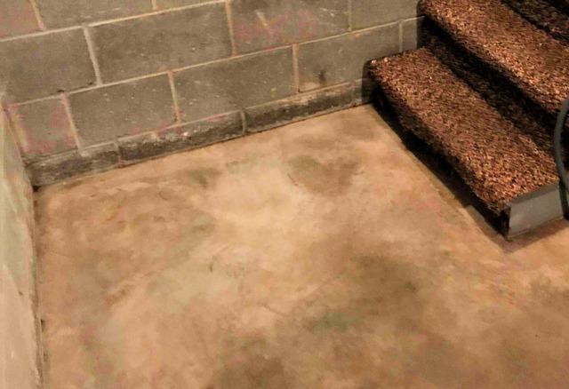 Basement Waterproofing Repairs in La Crescent, MN