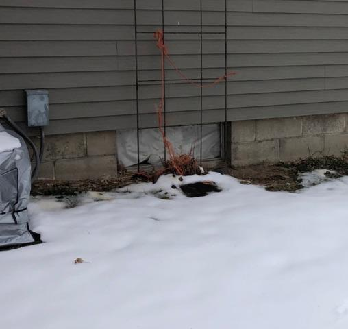 Basement Window Replaced in Brownsville, MN