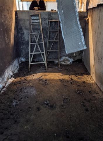 Basement Repair Contractor in Davenport, ND