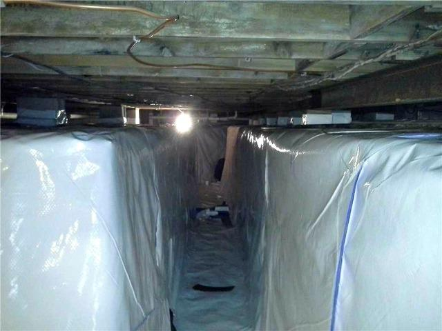 No Crawlspace layout is Unsuitable for CleanSpace