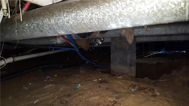 Crawl Space Protection in Reedsville WV