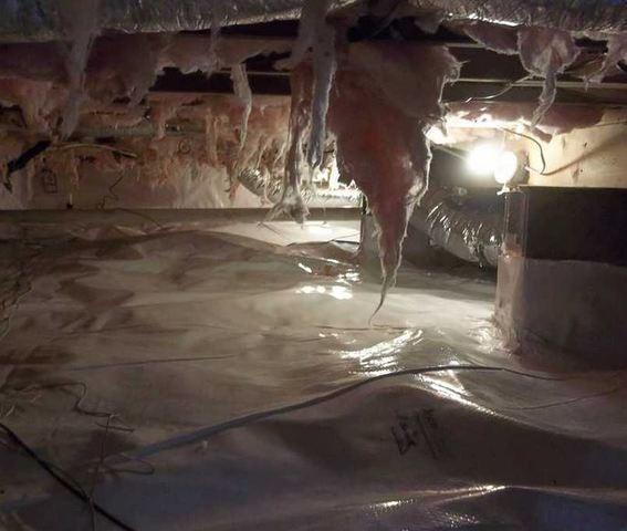 Morgantown Crawl Space Clean Up