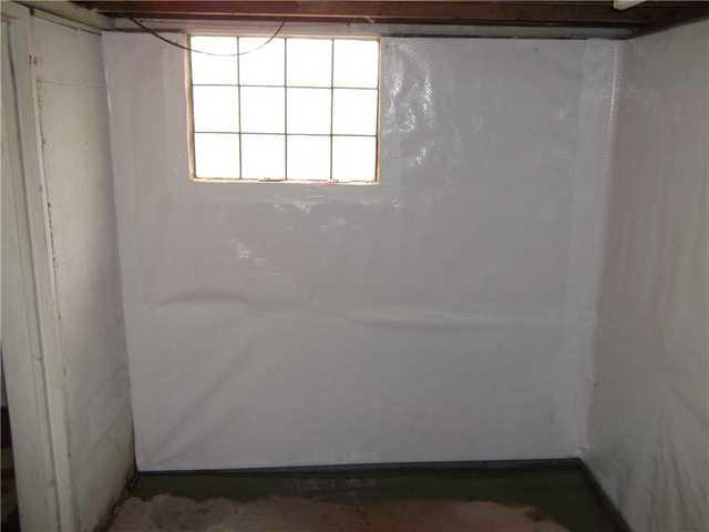 Moldy Basement Walls in Grindstone PA