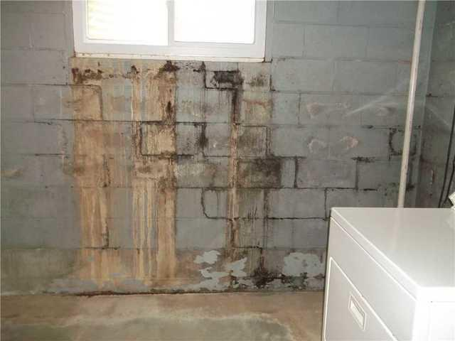 Moldy Basement Walls in Monroeville PA