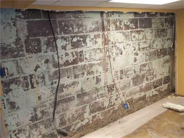 Basement Wall Insulation in Saint Clairsville OH