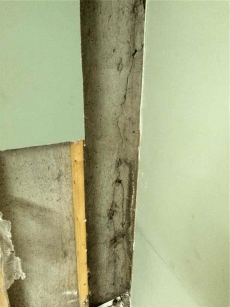Crack Found in Foundation Wall that was Repaired in Southeast Calgary, AB - Before Photo