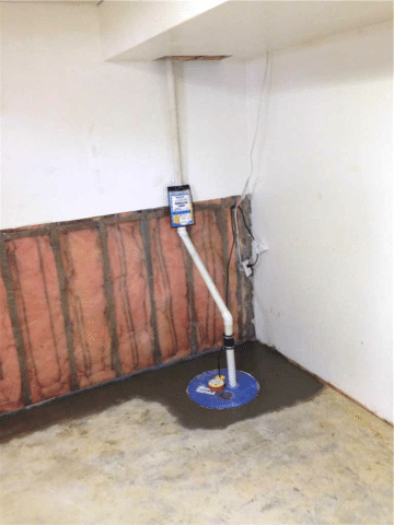 Concerned About Moisture Found in the Basement in Clive, AB