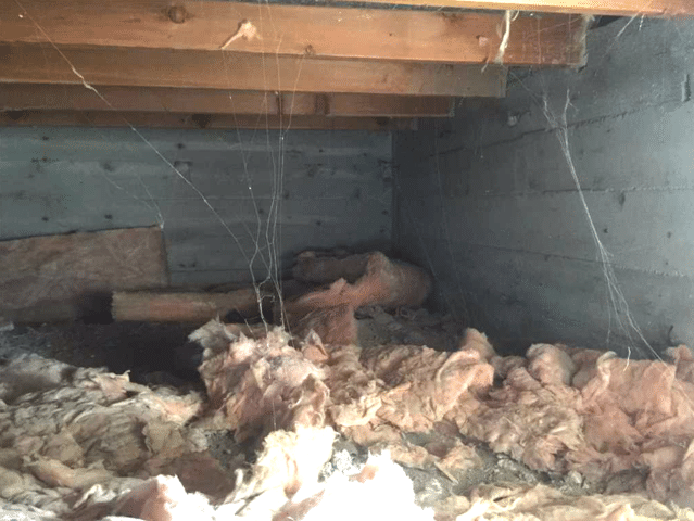 Vapor Barrier Installed in Crawlspace in Milk River, AB