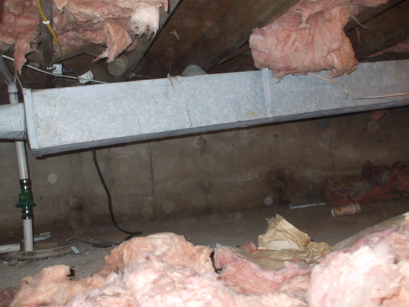 Nyack Crawlspace transformation and dehumidifier instillation - Before Photo