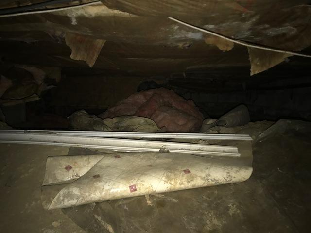 Damp Crawlspace Repair in Perryville, MD