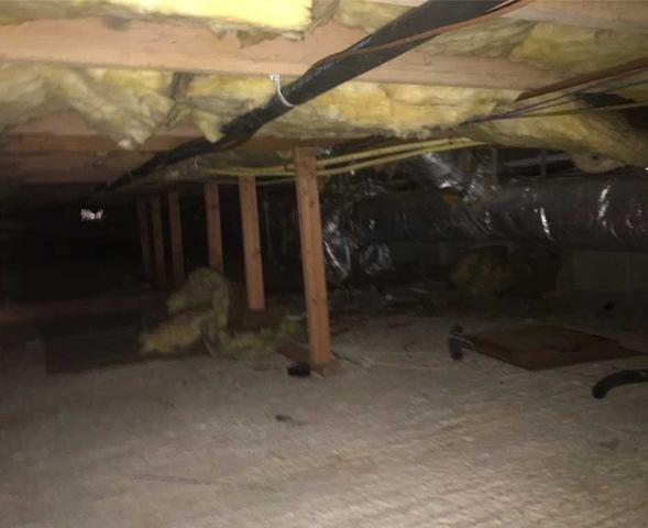 Crawlspace Encapsulation in Bryn Mawr PA