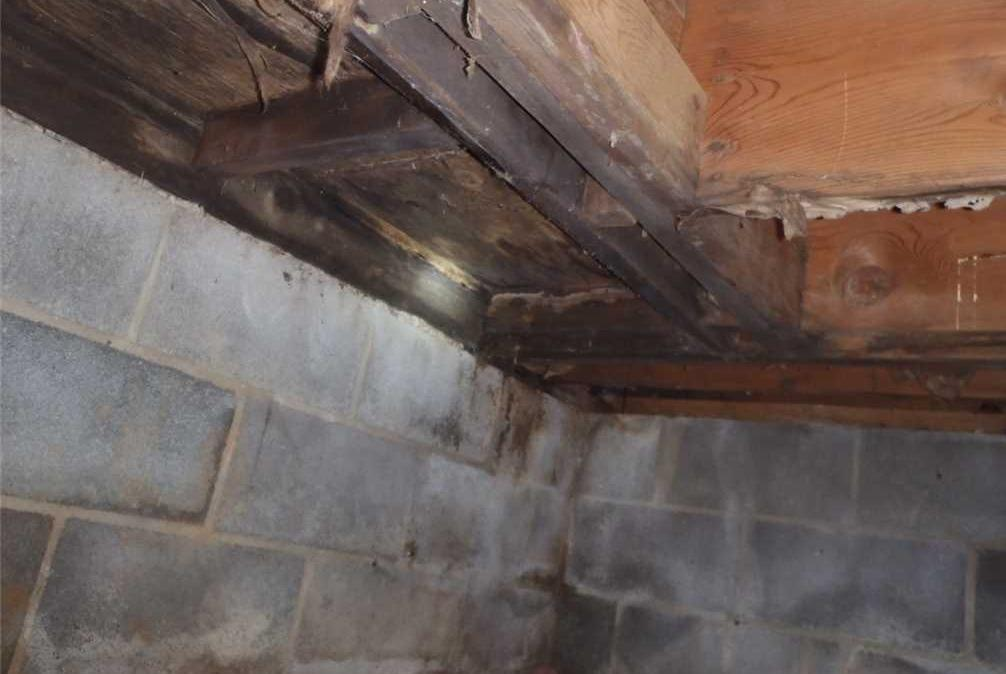 Healthier Environment with a Crawlspace Encapsulating to home in Charles Town WV - Before Photo