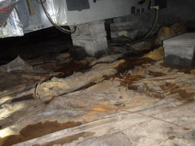 A Clean and Dry Solution to a Wet Crawl Space in Elkview, West Virginia - Before Photo