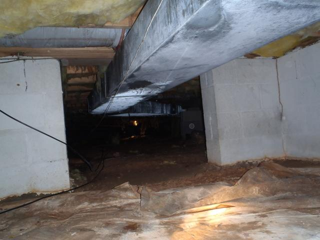 Crawl Space Transformation in Lavalette, WV