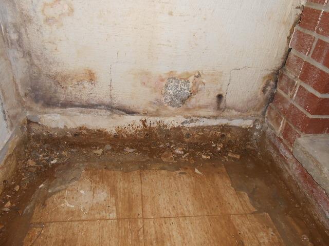 Basement Waterproofing in Ravenswood, WV