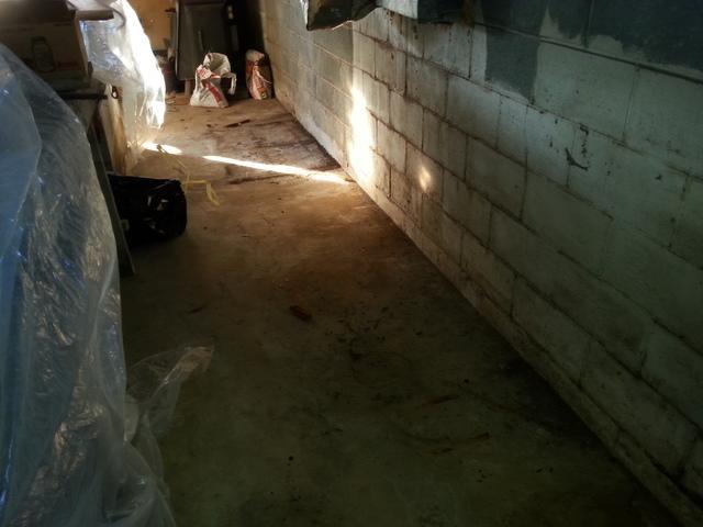 Basement Waterproofing in Jane Lew, WV