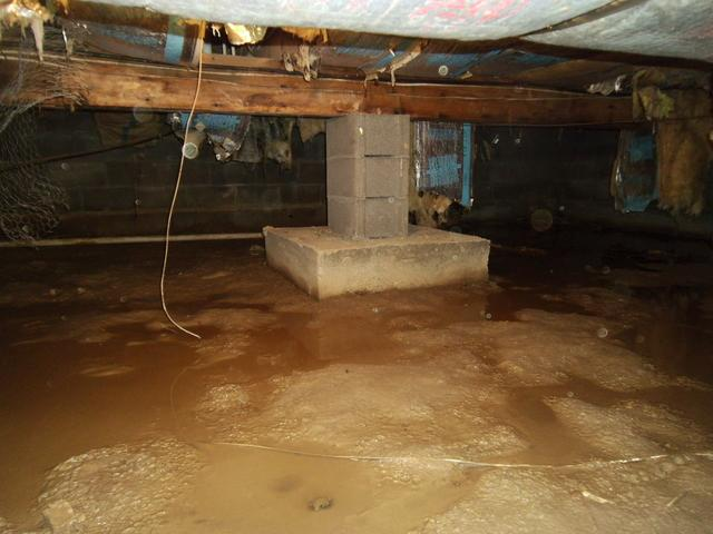 Crawl Space Encapsulation in South Side, WV