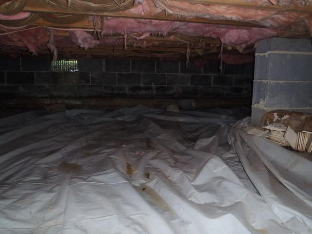 Crawl Space Encapsulation in Harpers Ferry, WV - Before Photo