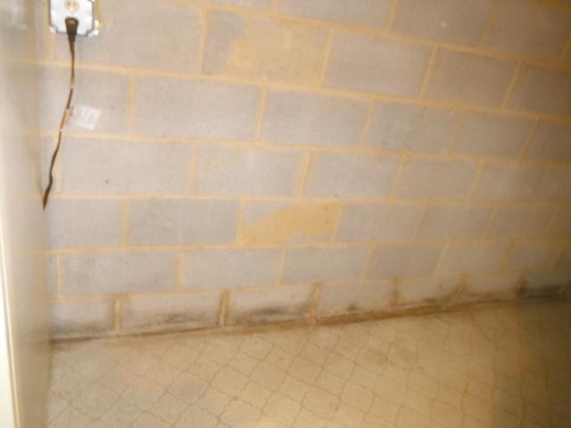 Basement Waterproofing in Capon Bridge, WV