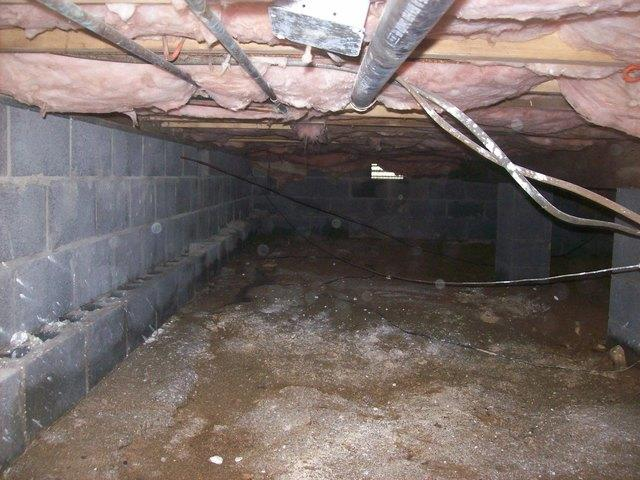 Crawl Space Repair in Thomas, WV