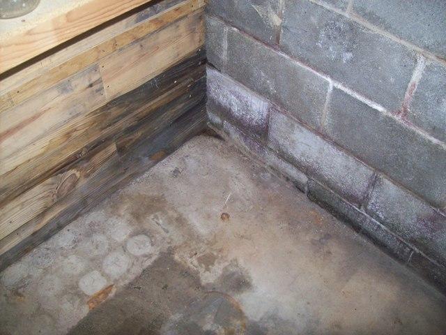 Basement Waterproofing in Thomas, WV