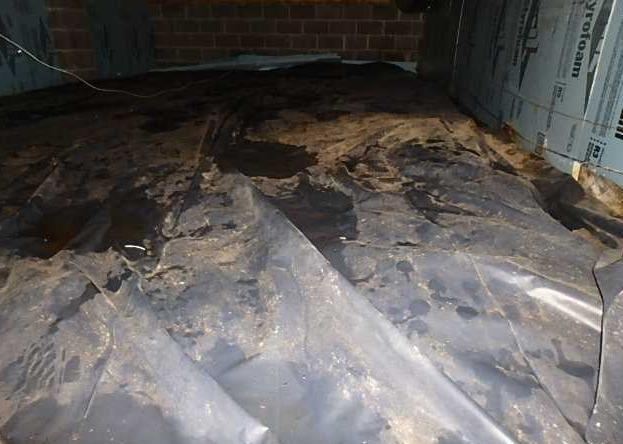 CrawlSpace Clean Up in Moorefield West Virginia