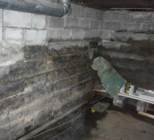 Basement Waterproofing in Reedsville WV