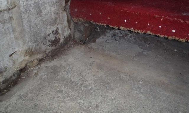 Basement Waterproofing in Mannington, WV
