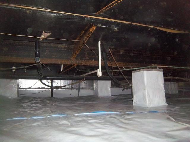 Crawl Space Transformation in Summersville, West Virginia