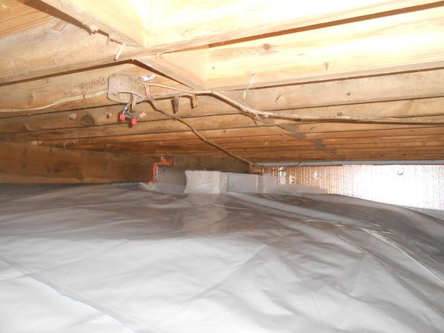 CleanSpace Saves Crawl Space in Davis, WV.
