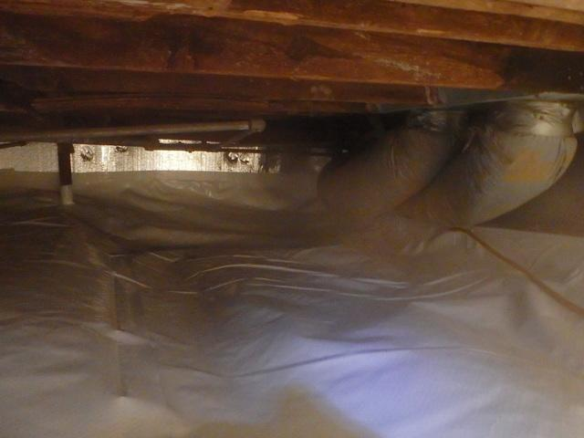 Before & After: From Standing Water to a Dry and Clean  Crawl Space in Lake Floyd