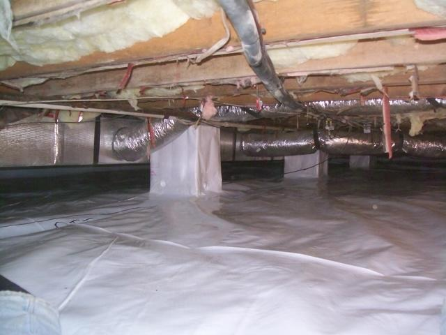CleanSpace Transforms Elkins Crawl Space
