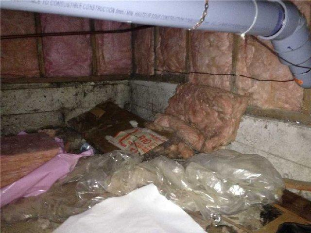 Crawlspace Clean up and Sealing in Vancouver, BC