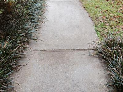 Sinking Concrete Slab or Sidewalk in Peoria - After Photo