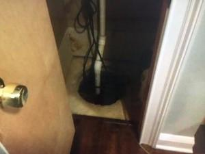 Old Moldy Sump Pump in Trenton, NJ - Before Photo