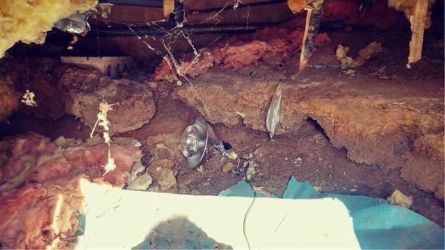 Moldy Crawlspace in Upper Black Eddy, PA