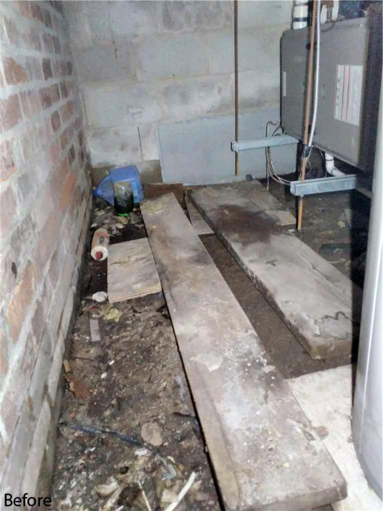 Humidity Causes Crawl Space Mould at Cottage in Fenelon Falls, Ontario - Before Photo